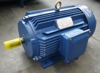 YE2-80~355 系列高效率三相异步电动机